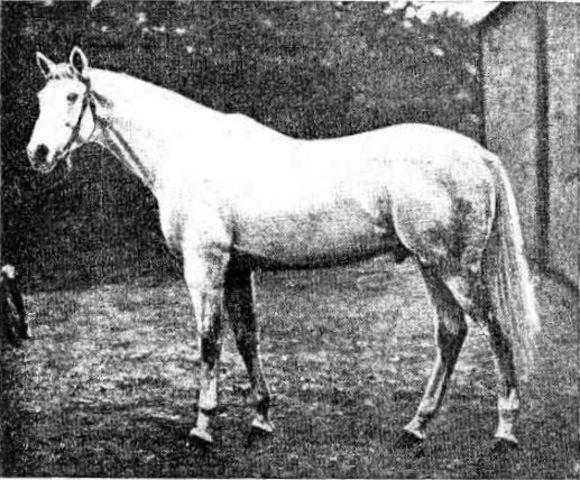 Palmiste (born 1894)