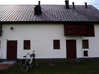 Bergman's cinema, Dämbä
