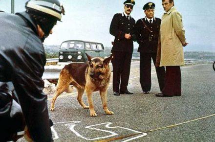 doggone it! ILLUSTRIOUS CORPSES